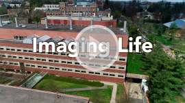 Imaging Life: A video featuring imaging technologies in support of research within the Department of Molecular Biology at Princeton University.