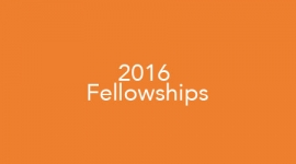 Graphic of 2016 Fellowships