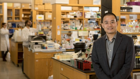 Kang Awarded ACS Research Professorship Grant