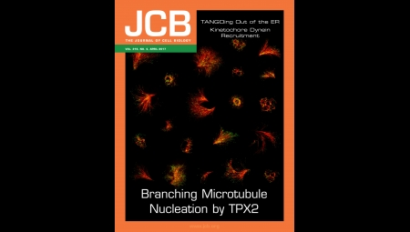 Cover of The Journal of Cell Biology titled Branching Microtubule Nucleation by TPX2