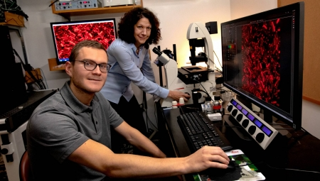 Bassler and graduate student Justin Silpe have identified a virus that can listen in on bacterial conversations