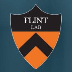 Flint lab research
