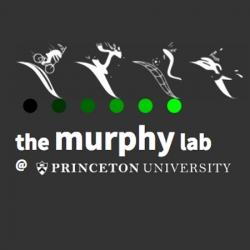 Murphy Lab research