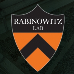 Rabinowitz lab research