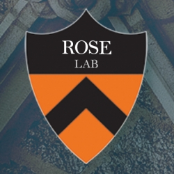 Rose Lab research
