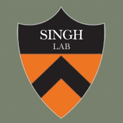 Singh Lab research