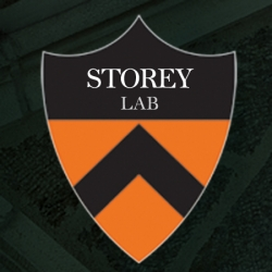 Storey lab research